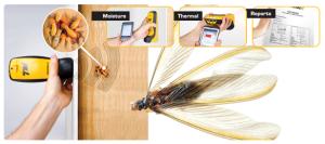 Termite-Detection-Cameras1