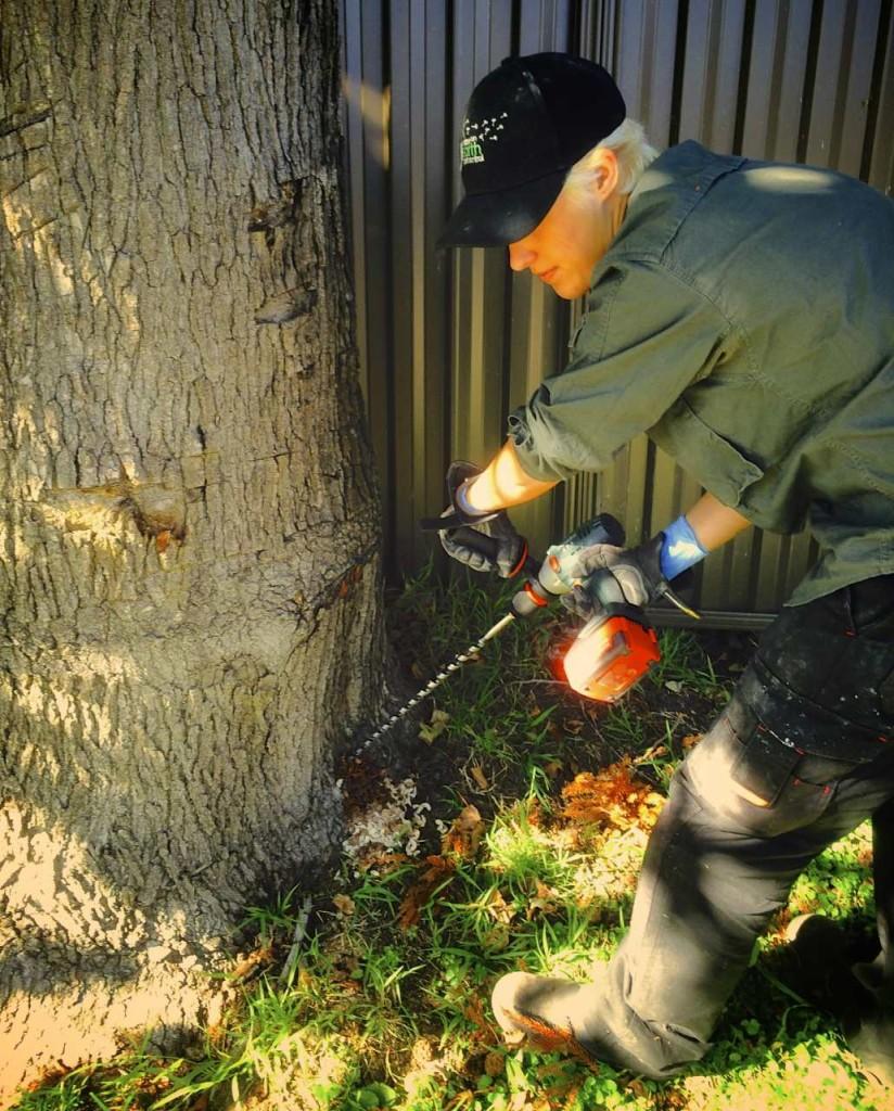 Termite Management_02